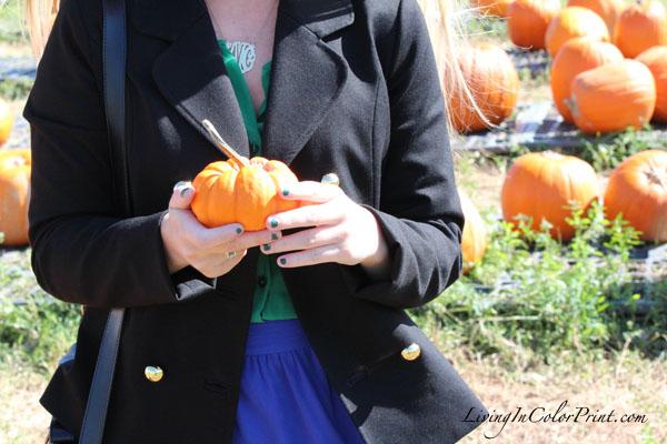 Pumpkin Patch photo shoot, Florida in fall, Alice & Trixie coat