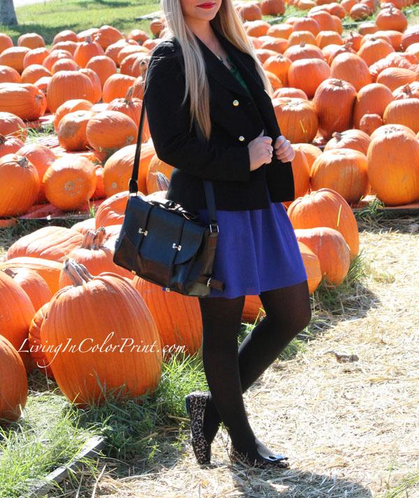 OASAP black satchel, kristin clark blogger, fall blogger outfit, purple LOFT skirt