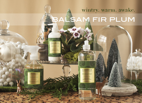 Caldrea Balsam Fir Plum