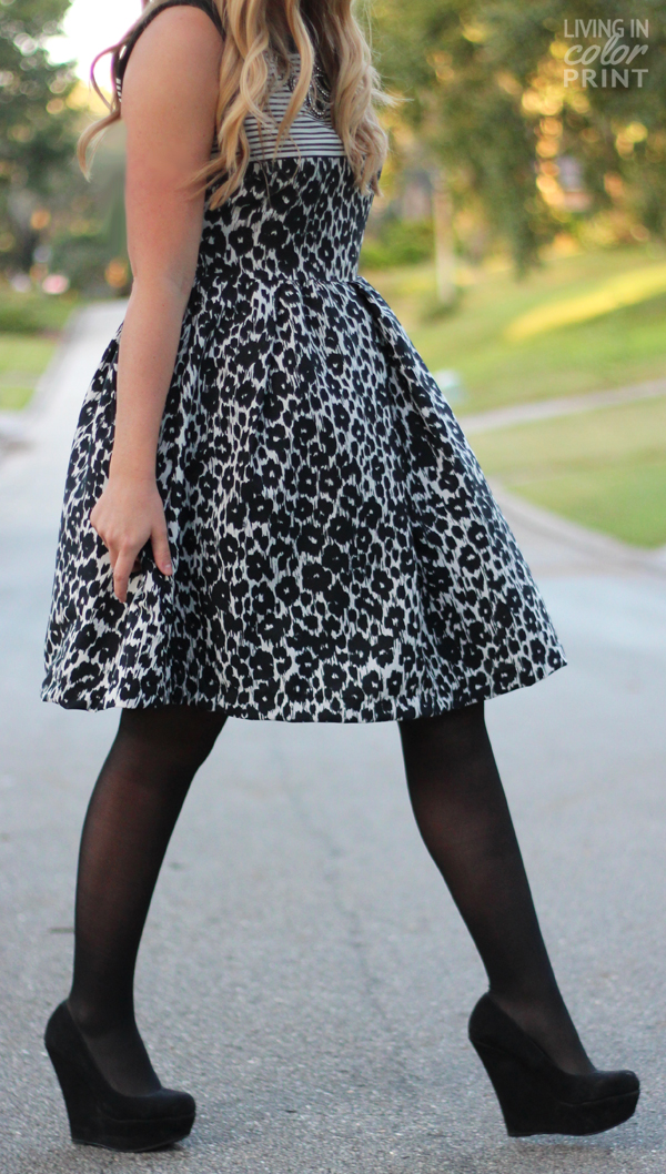 Black + White Leopard