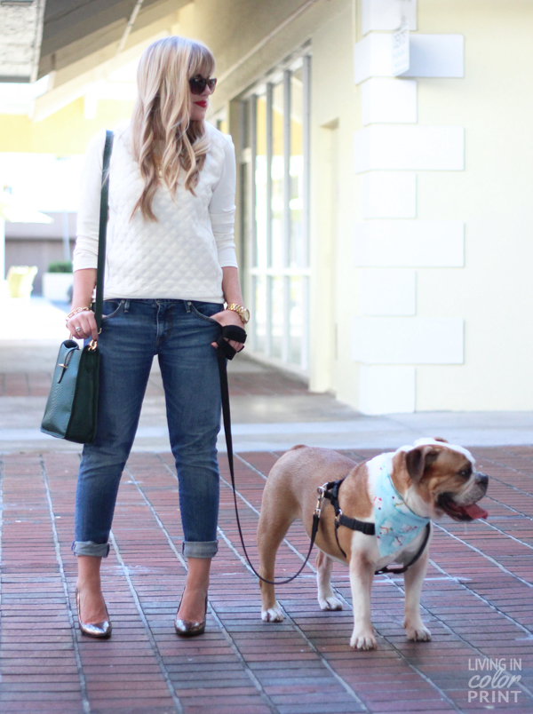 Doggy Date | Living In Color Print