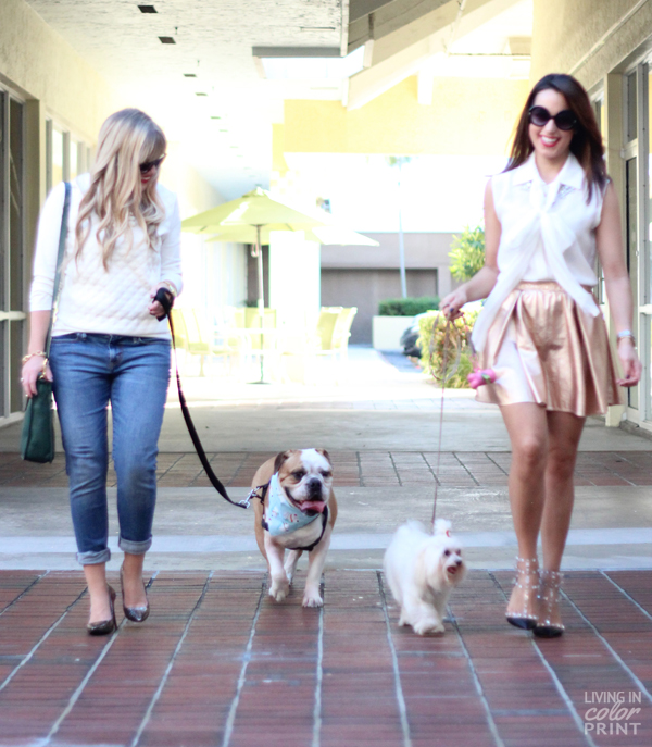 Double Doggy Date | Living In Color Print