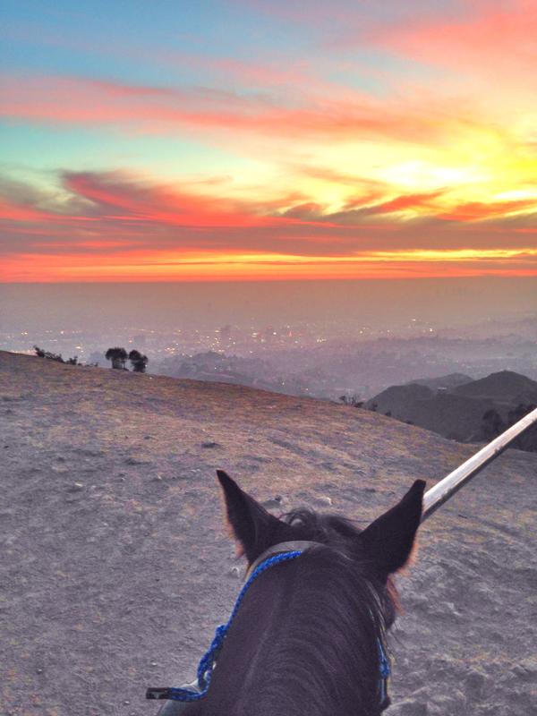 Horseback Riding in LA