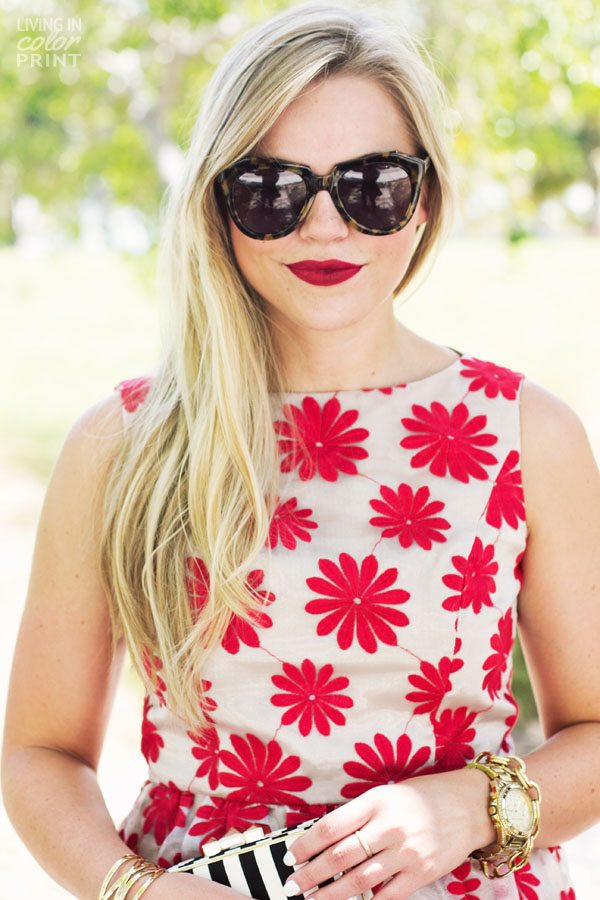 Red Daisies | Living In Color Print8