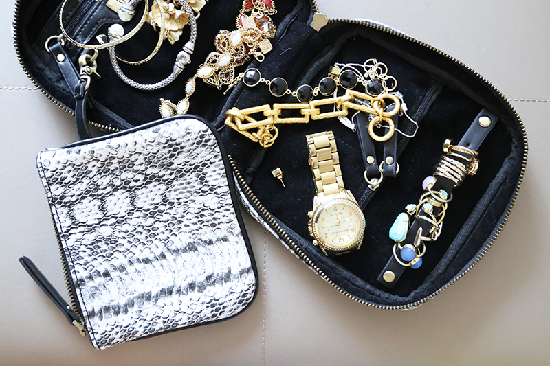 travel-jewelry-case-carrier