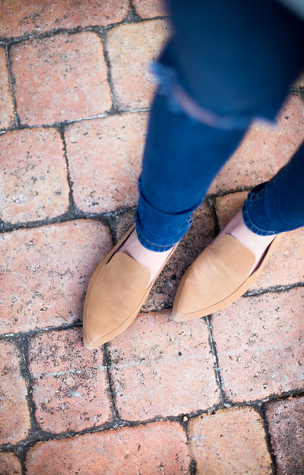Camel Suede Backless Loafers