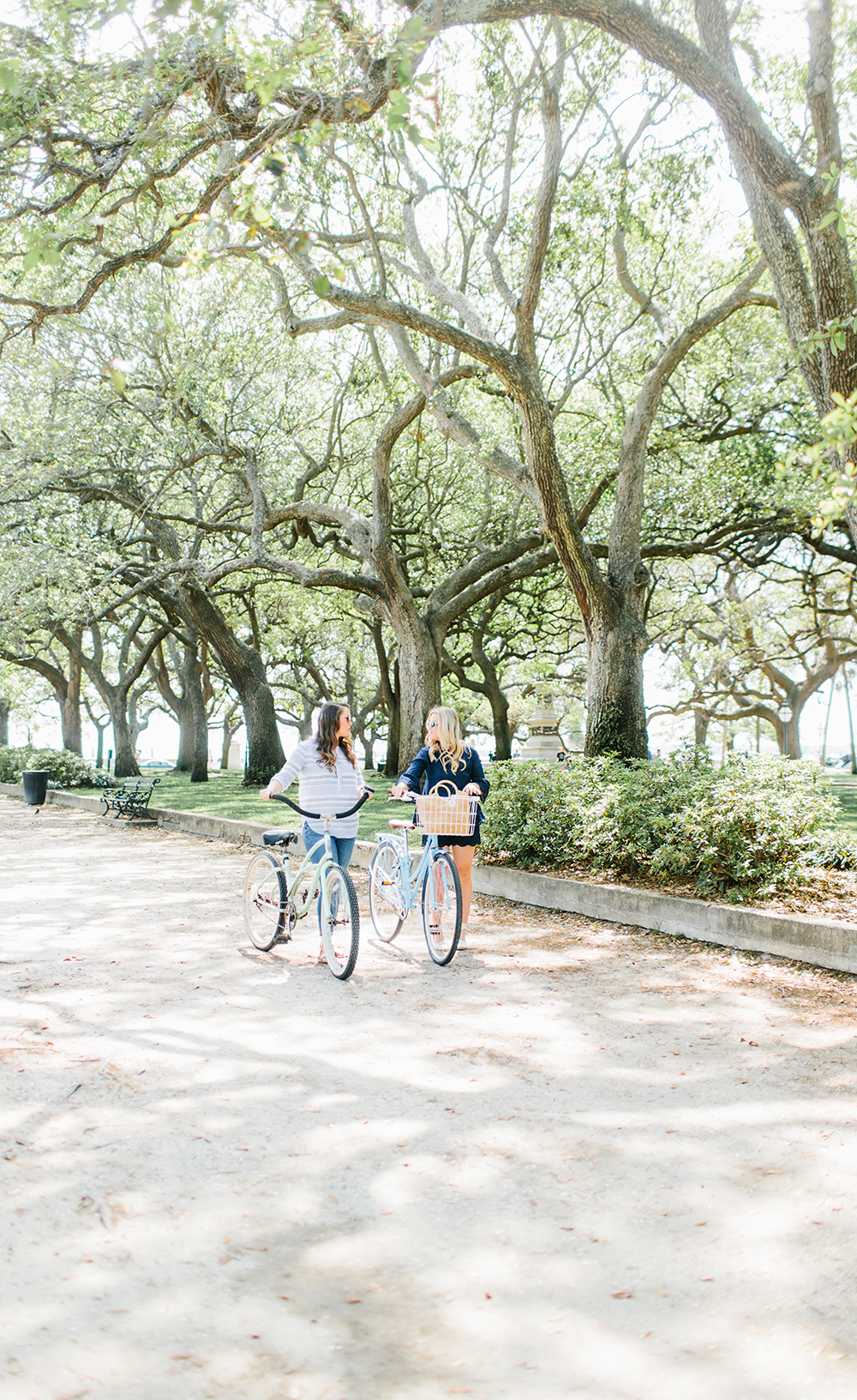 Bike Ride through the Battery, Charleston