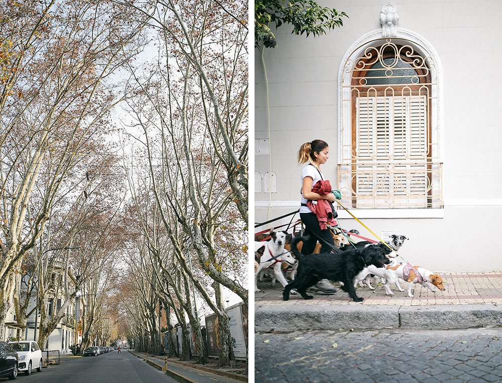 Buenos Aires in December