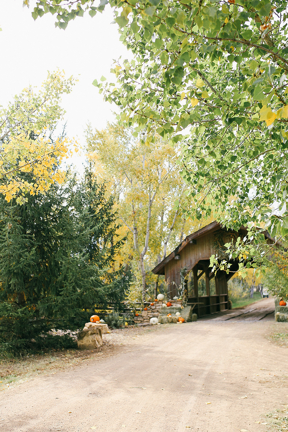 Covered Bridge Ranch, Colorado