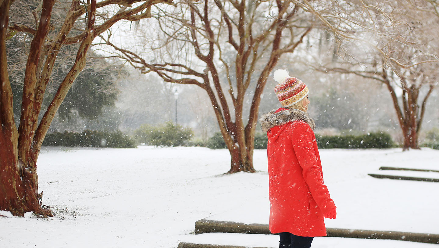 A Charleston Snow Day