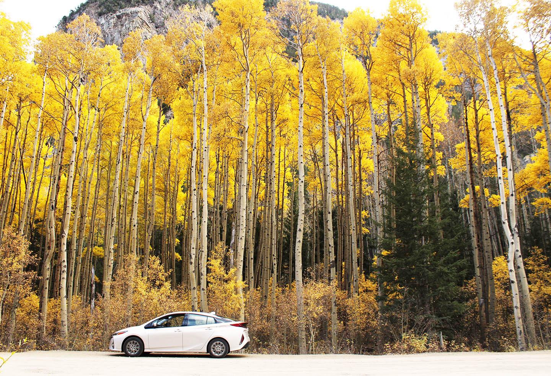 Colorado Fall Mountain Drive