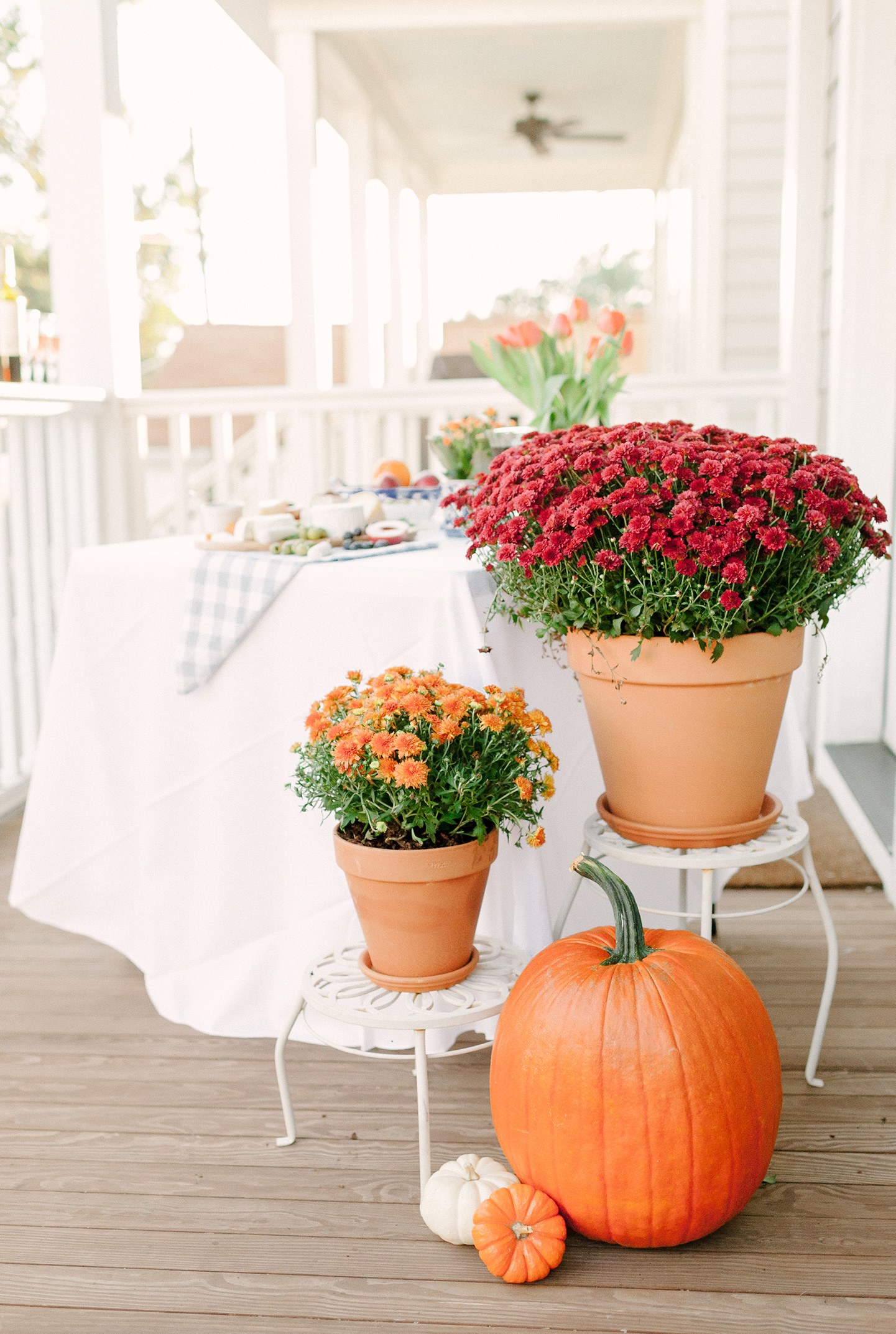 Fall Porch Hosting in Charleston | COLOR by K