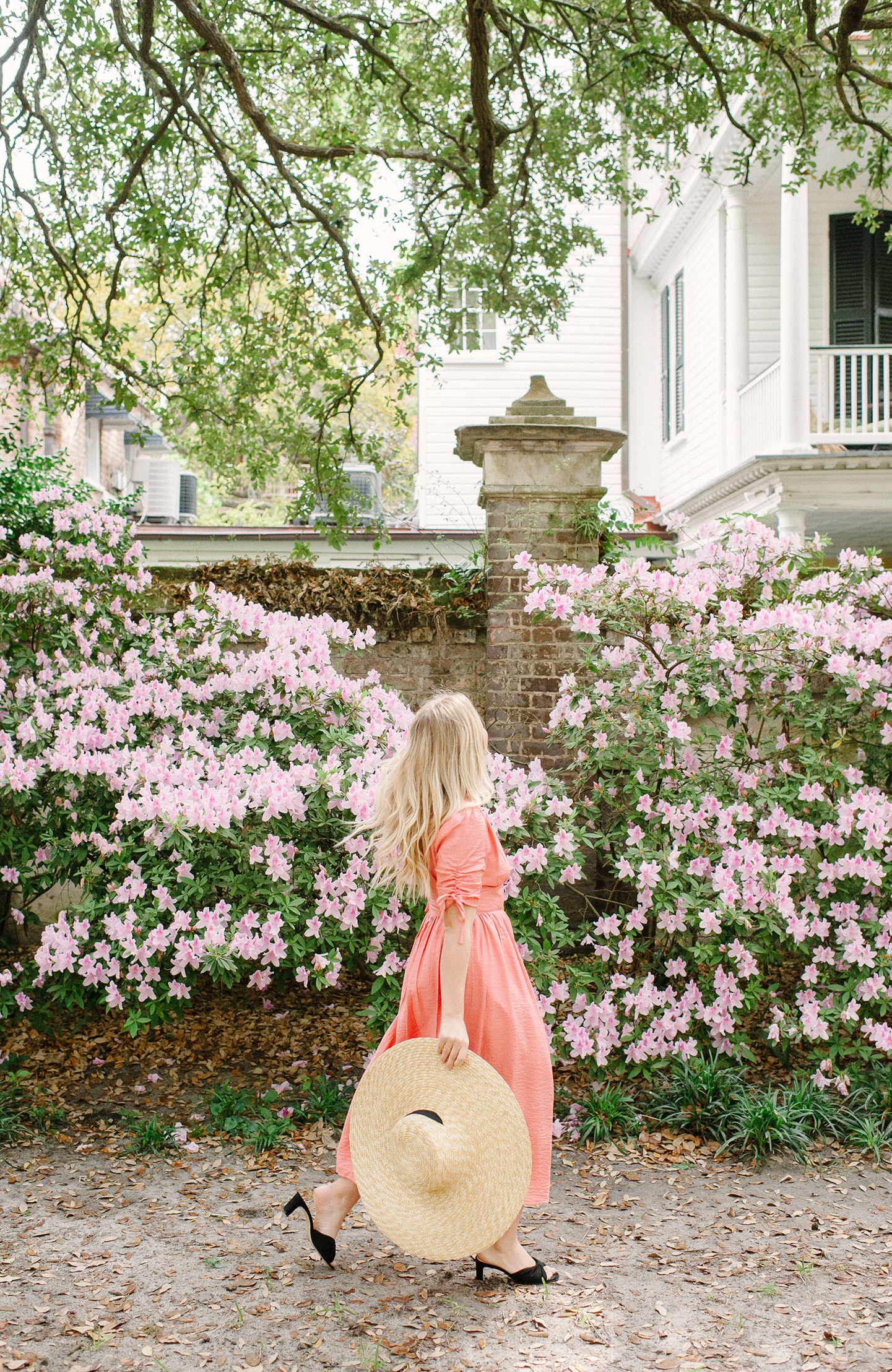 Charleston Flower Guide