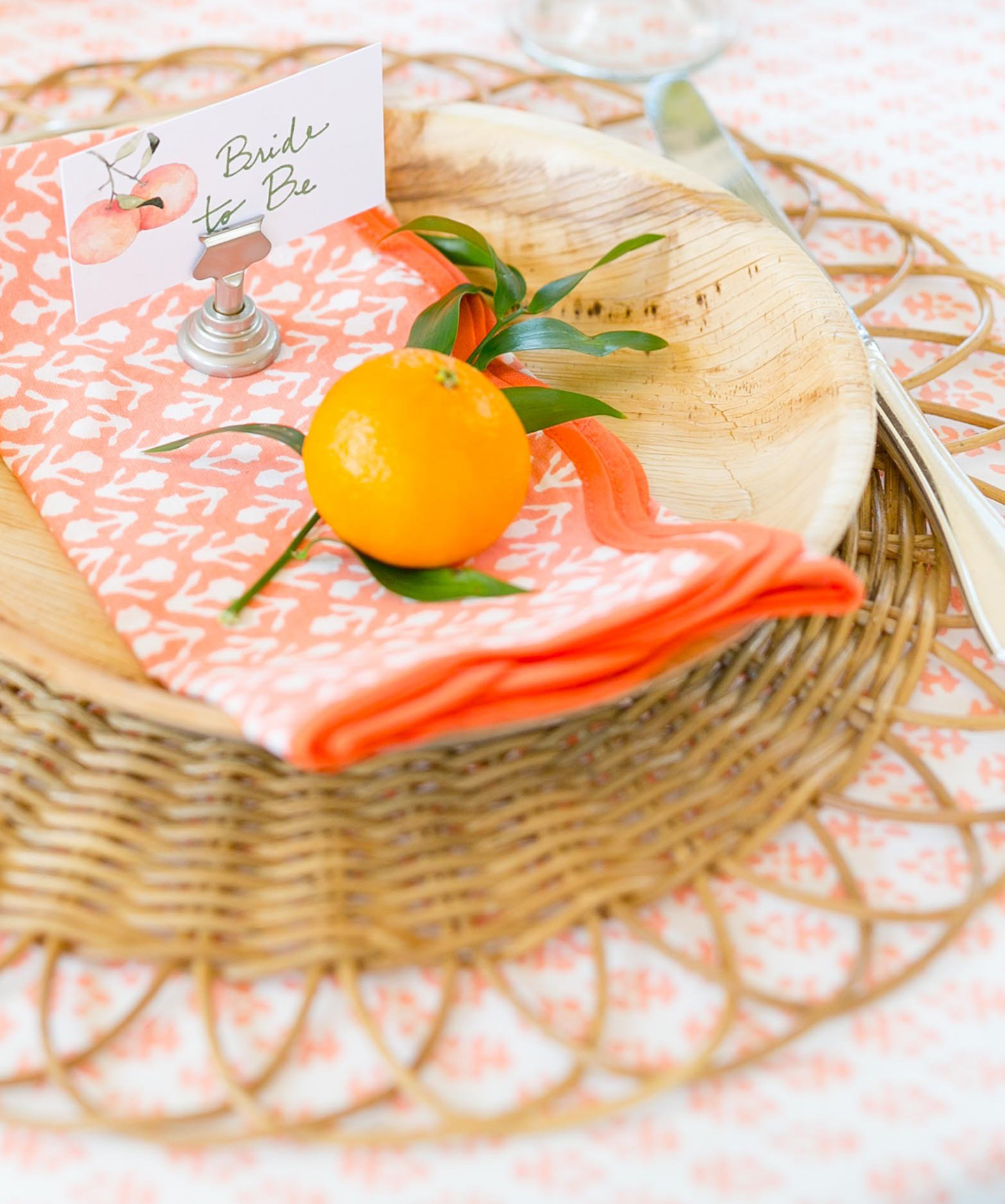 Amanda Lindroth Coral Napkin + Citrus Place Setting