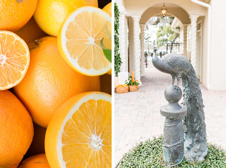 Floridian Citrus Bridal Shower
