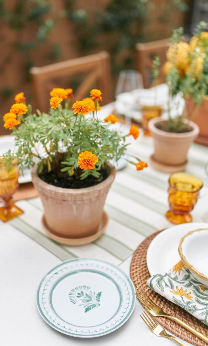 Scalloped Terra Cotta Pot + Marigold Flowers