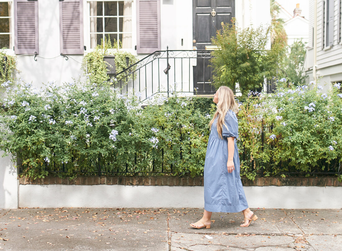 Strolling in Downtown Charleston | Dusty Blue Color Palette