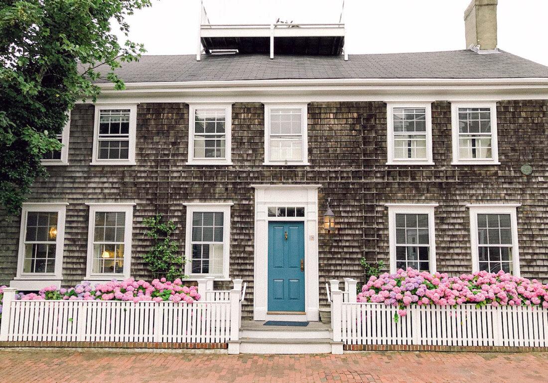 Hydrangeas on Nantucket in Town